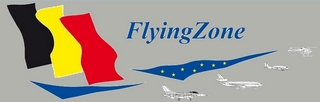 Flying Zone.jpg