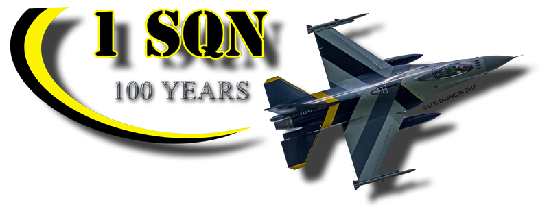 1 SQN 100 YEARS F-16 800.png